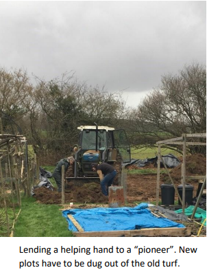 Tractor digging new allotments